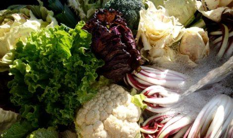 verdura Zolla14