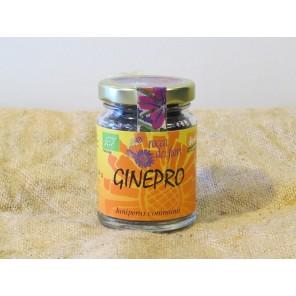 GINEPRO 30G