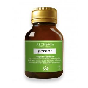 Perna+
